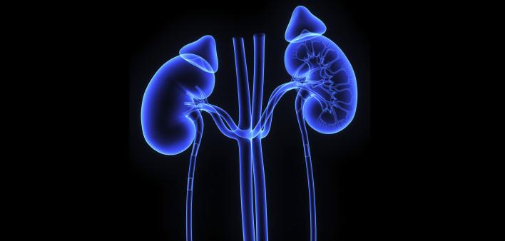 肾肿瘤诊治的重要,英立达实际效果比索坦好么这些不可思议的靶向药物
