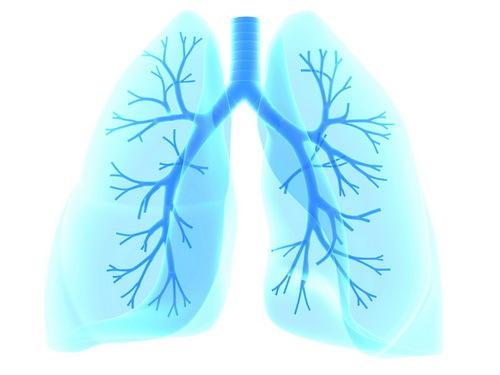 自主创新靶向治疗药物开第一批药方,尼达尼布功效在我国肺部纤维化医治迈入里程碑式性提升